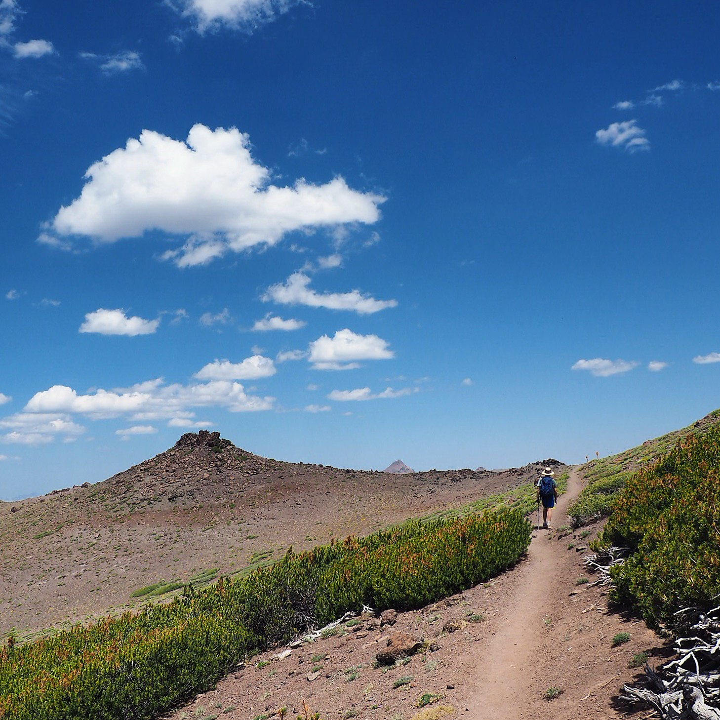backpack45 on hiking the trail pacific crest trail - HD1458×1458
