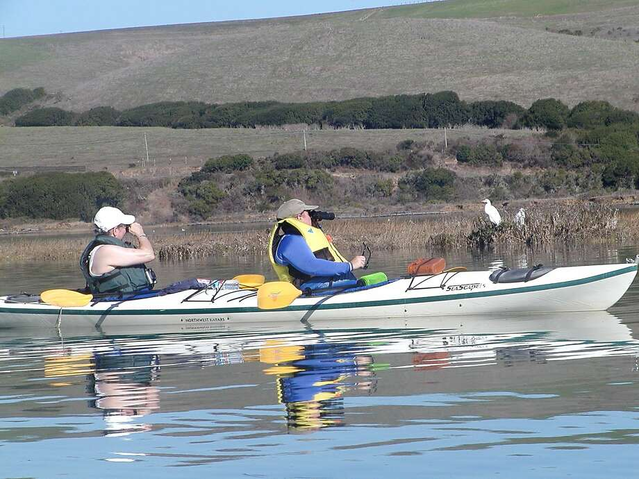 Boating and kayaking at Tomales Bay provides access to secluded beaches and wildlife views. Photo: John Granatir/Blue Waters Kayaki