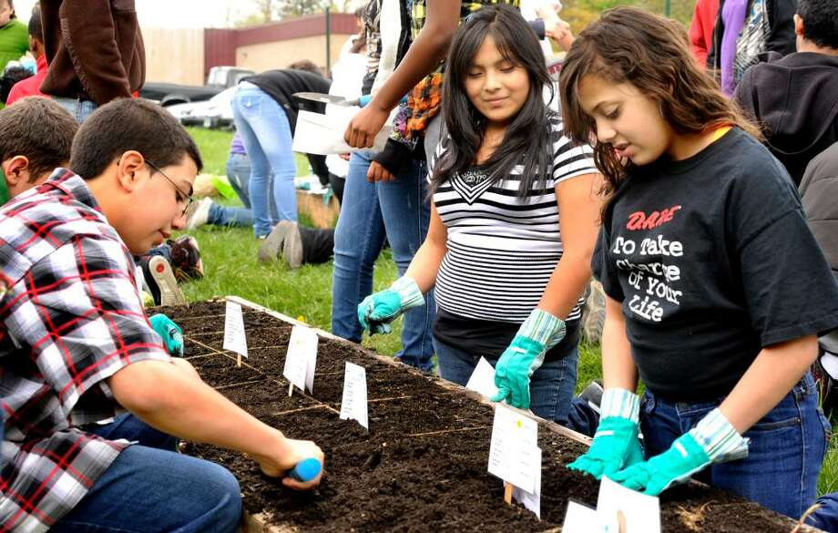 Eigth grade science students work planting a vegetable garden at Roders Park School on Wednesday, April 28, 2010. At left is Abraham Elgolshani, Ruth Gonzalez, and Mila Oliveira, right. Photo: Michael Duffy / The News-Times