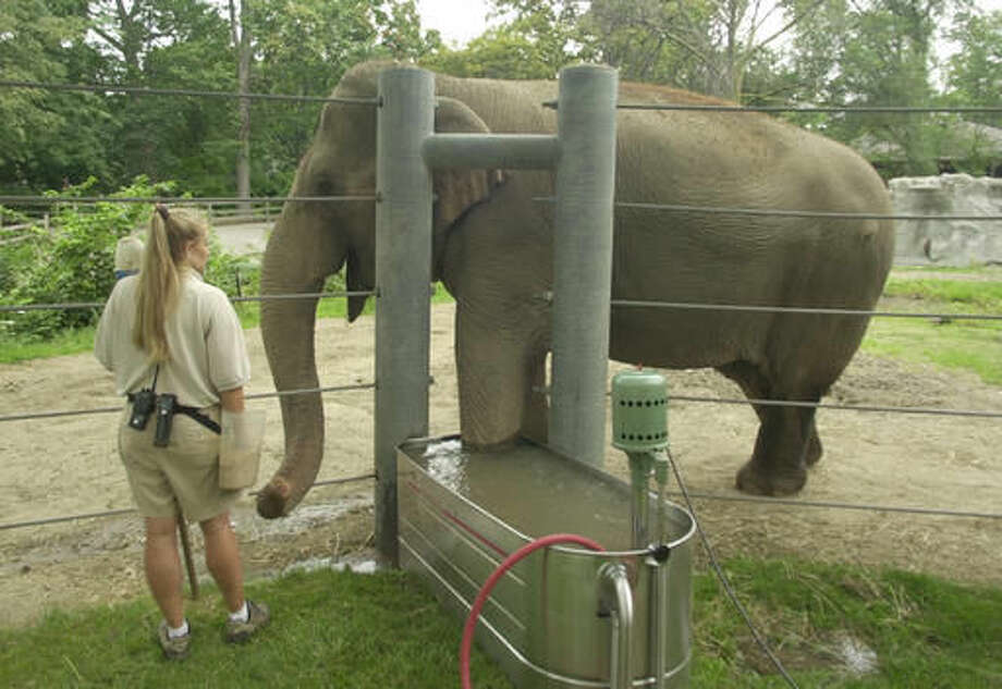 FILE--In this Aug. 23, 2004, file photo, elephant keeper Mary Wulff keeps the attention of Wanda, an Asian elephant, who is undergoing a whirlpool bath at the Detroit Zoo in Royal Oak, Mich. A new children's book immortalizes Wanda and Winky, former Detroit Zoo elephants who moved to California to live out their final years. Wanda was euthanized in 2015 because of arthritis and foot problems. Winky died in 2008. (AP Photo/Carlos Osorio) Photo: Carlos Osorio