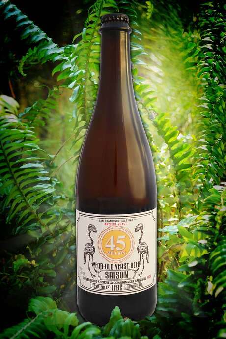 Fossil Fuels Brewing Company and Schubros Brewery to release saison brewed with 45-million-year-old yeast strain Photo: Courtesy Fossil Fuels Brewing Company