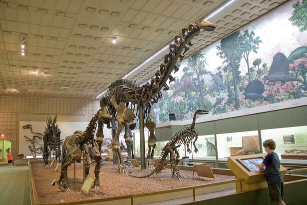 The Great Hall's dinosaur exhibit at the Yale Peabody Museum is especially popular with children.