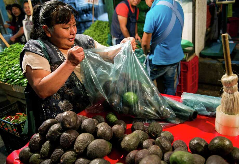 Avocados, which have been commanding higher prices, are bagged up in Mexico City. The trees grow at about the same altitude as pine and fir trees in Michoacan. Photo: Nick Wagner, STF / WagnerPhotos
