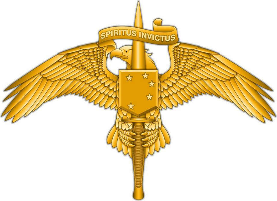 The new insignia of the Marine Raiders. Photo: Handout / Handout