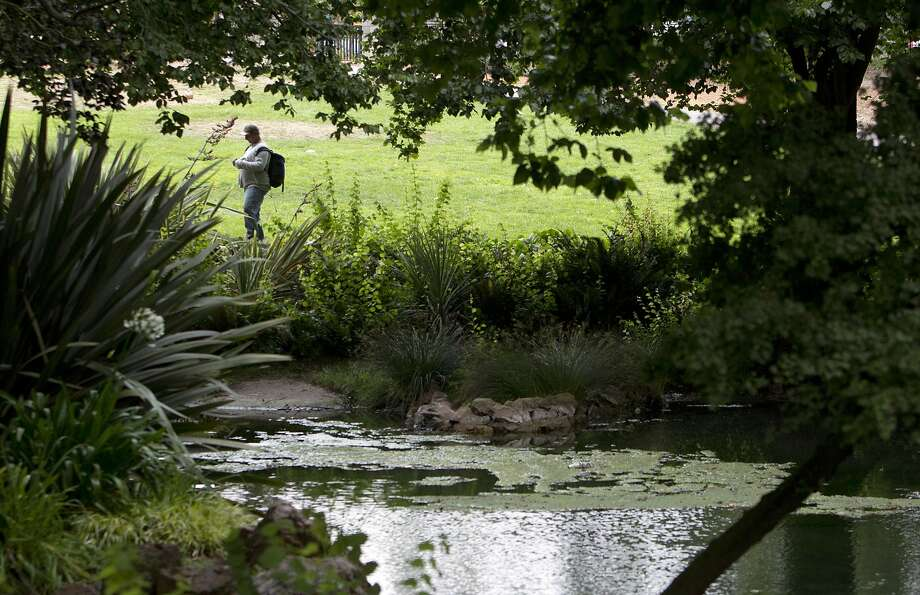 Alvord Lake in Golden Gate Park, where the body of 66-year-old Stephen Williams was found in May. Photo: Carlos Avila Gonzalez, The Chronicle