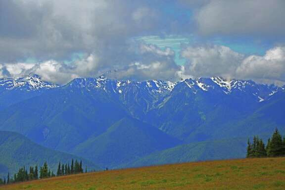 The view of the peaks of the Olympic Mountains makes the drive up to Hurricane Ridge one of the most popular activities in Olympic National Park.