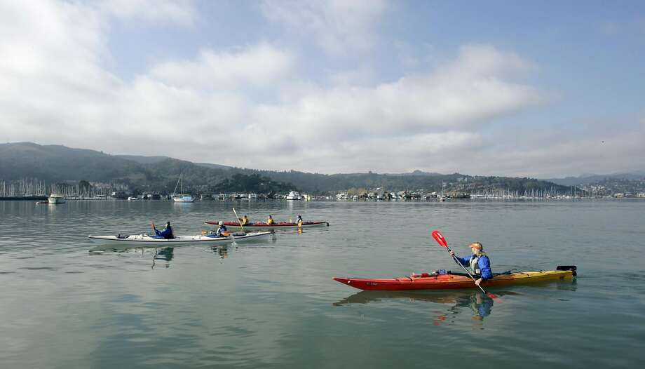 Sea Trek in Sausalito  runs Kayak trips in Richardson Bay and along the Sausalito water front . EBLKAYAK_0189_kr.JPG 10/30/04 in Sausalito,CA. KURT ROGERS/THE CHRONICLE  ALSO Ran on: 05-31-2007 Paddlers in Richardson Bay try out kayaks provided by Sausalito's Sea Trek Ocean Kayaking Center, which is leading a 9.5-mile bay tour around Angel Island on Saturday. Photo: KURT ROGERS, SFC