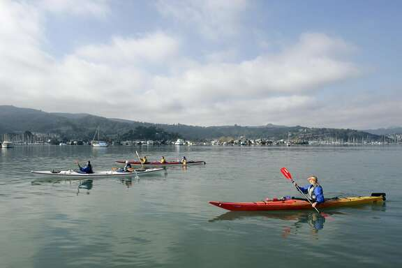 Sea Trek in Sausalito  runs Kayak trips in Richardson Bay and along the Sausalito water front . EBLKAYAK_0189_kr.JPG 10/30/04 in Sausalito,CA. KURT ROGERS/THE CHRONICLE  ALSO Ran on: 05-31-2007 Paddlers in Richardson Bay try out kayaks provided by Sausalito's Sea Trek Ocean Kayaking Center, which is leading a 9.5-mile bay tour around Angel Island on Saturday.