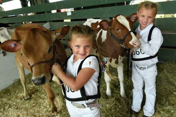 Grace Depew, 6, of Argyle, left, with her Jersey heifer, Gold, and cousin Lily Olsen, 6, of Granville with her Holstein heifer, Lil, pause for a picture during the Washington County Fair on Wednesday, Aug. 24, 2016, at the fairgrounds in Easton, N.Y.The fair runs through Sunday. (Cindy Schultz / Times Union)