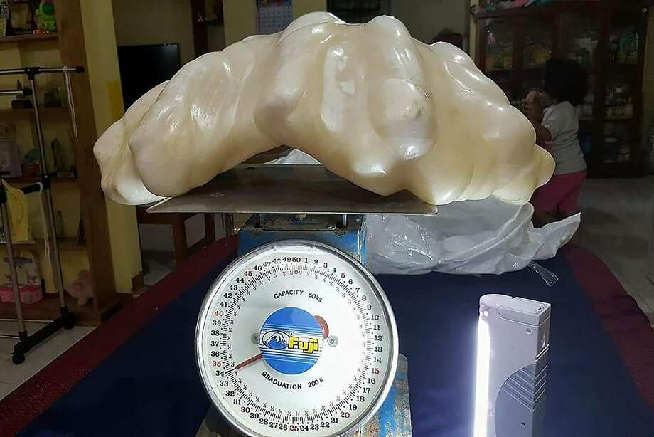 Fisherman finds world's largest pearl worth $135 million