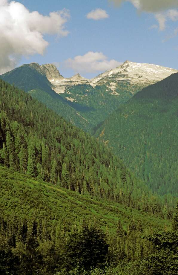 Washington, North Cascades National Park, Mountains Along Cascade River Road. (Photo by Education Images/UIG via Getty Images) Photo: Education Images/UIG Via Getty Images