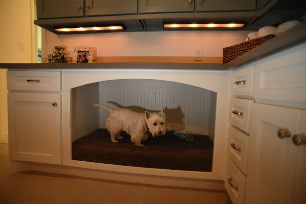 Drees Custom Homes now has model homes in the Woodtrace neighborhood in Tomball with multi-purpose family ready areas, including a large built-in pet bed being checked out by Westie Banan Kidwell, 6, of Austin. (Photo by Jerry Baker/Freelance)