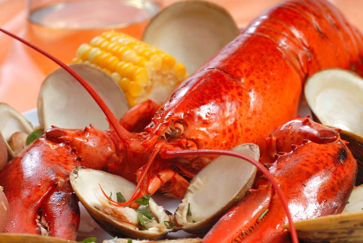 Visit Lyman Orchards in Middlefield on Saturday August 27 for the quintessential New England Clam Bake. The day includes clam chowder, steamed mussels and clams, lobster, along with the fixings!Find out more.