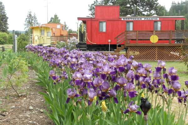 4. The little engine that could     Cost per night:  $153 and up    Location:  Cle Elum, Wash.   Cabins are nice, but sometimes to might crave something a little different. This repurposed caboose in Cle Elum might be just what you're looking for. The rental include access to four caboose cars and can accommodate up to six people.    You can see the full listing here.