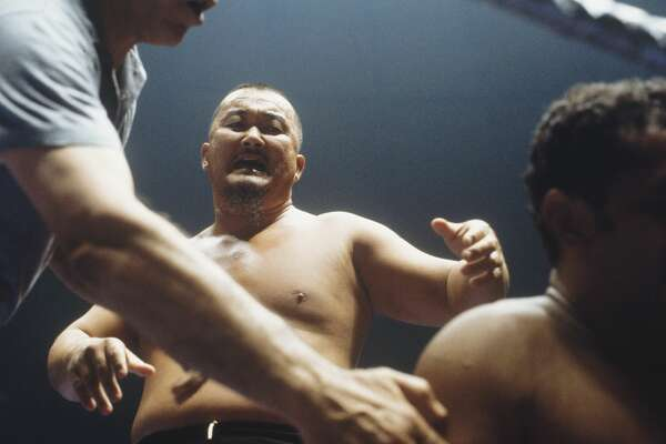 Mr. Fuji  <br> 