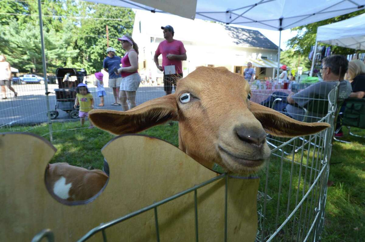 Lebanon Country Fair, Lebanon The 61st Annual Lebanon Country Fair returns with livestock, crafts, carnival rides and more all weekend long. Find out more.