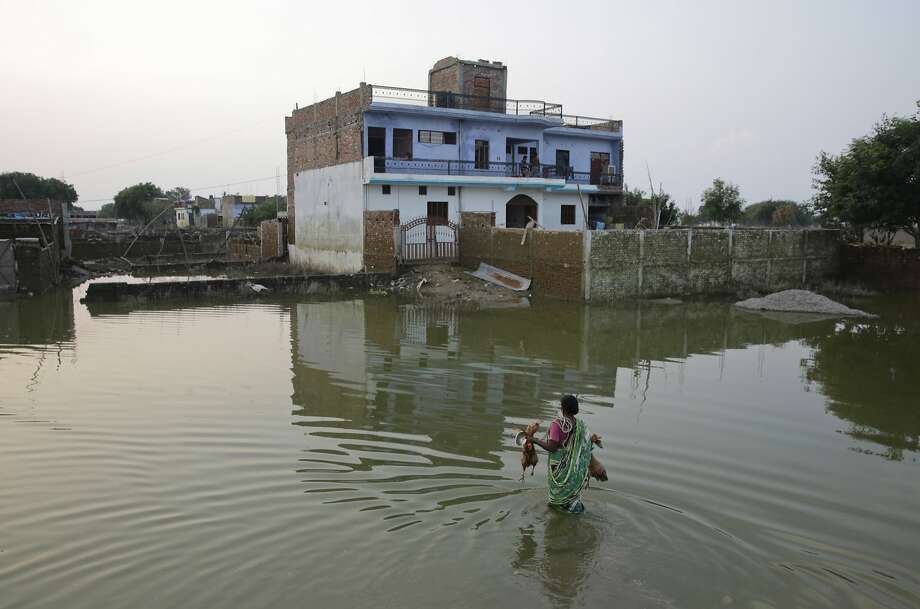 An Indian woman returns home carrying her roosters after flood waters receded in Allahabad, Uttar Pradesh state, India, Sunday, Aug. 28, 2016. Flood water levels stabilized with rains ebbing over the past five days in this northern state, where 200,000 people had moved to relief centers after their homes were submerged. (AP Photo/Rajesh Kumar Singh) Photo: Rajesh Kumar Singh, Associated Press
