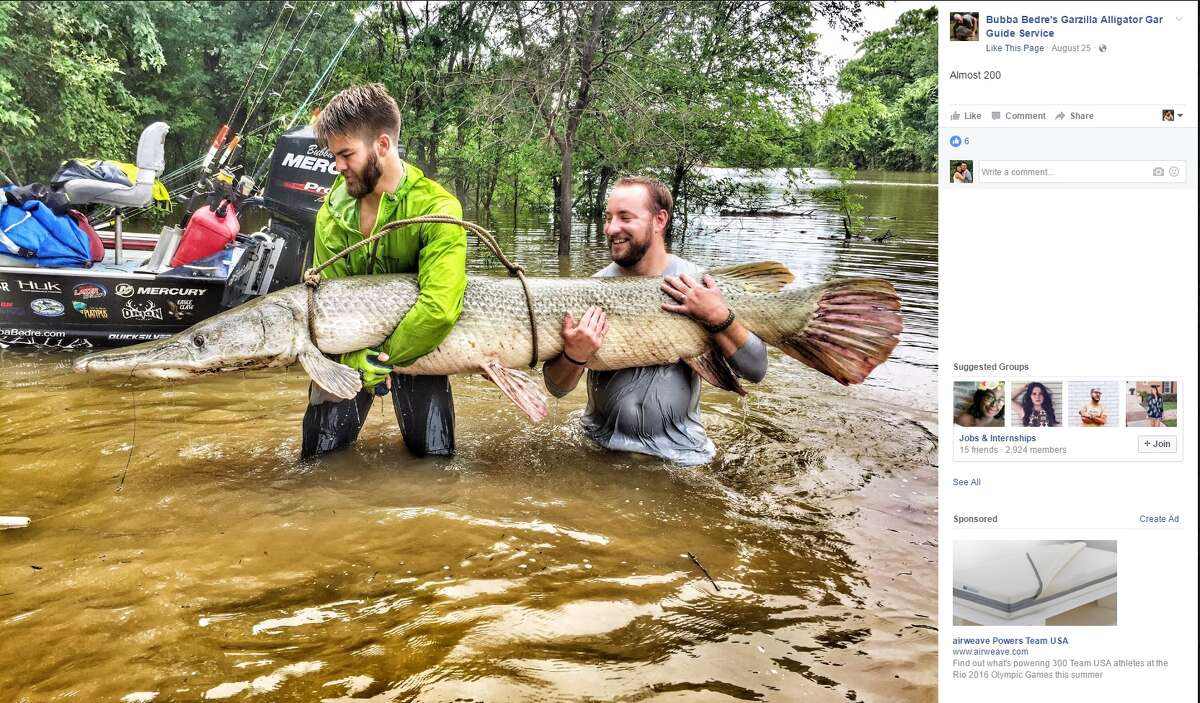 Photos show the dozens of alligator gars and monster turtles that have been caught in 2016 through Bubba Bedre's Garzilla Alligator Gar Guide Service.