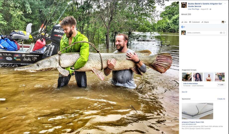 Photos show the dozens of alligator gars and monster turtles that have been caught in 2016 through Bubba Bedre's Garzilla Alligator Gar Guide Service. Photo: Courtesy/Facebook