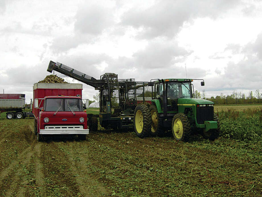 Harvest of the 2016 Michigan Sugar Company's sugar beet crop recently started with a limited delivery to get the factories operating. Michigan Sugar, a grower-owned cooperative, produces about 1 billion pounds of sugar annually from factory production in Caro, Croswell and Sebewaing.
