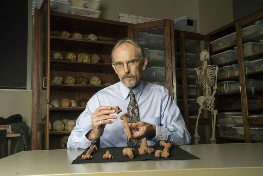 University of Texas professor John Kappelman holds 3-D-printed copies of pieces of Lucy's skeleton. Lucy suffered compressive fractures in her right humerus when she died 3.2 million years ago. (Marsha Miller/University of Texas) Photo: Marsha Miller/UT Austin, HO / Los Angeles Times
