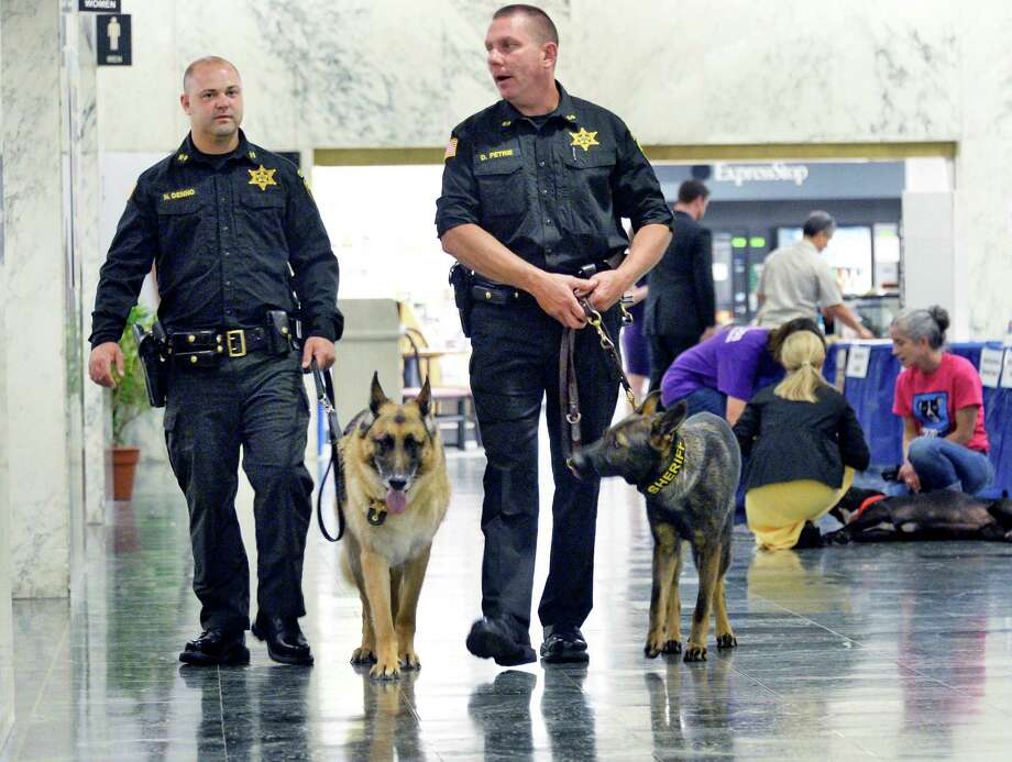 Saratoga County Sheriff's deputies Nick Denno, left, and Dave Petrie walk the K-9's Gunner and Stuka during the 6th Annual NYS Animal Advocacy Day in the Well of the Legislative Office Building Tuesday June 7, 2016 in Albany, NY.  (John Carl D'Annibale / Times Union) Photo: John Carl D'Annibale / 40036871A