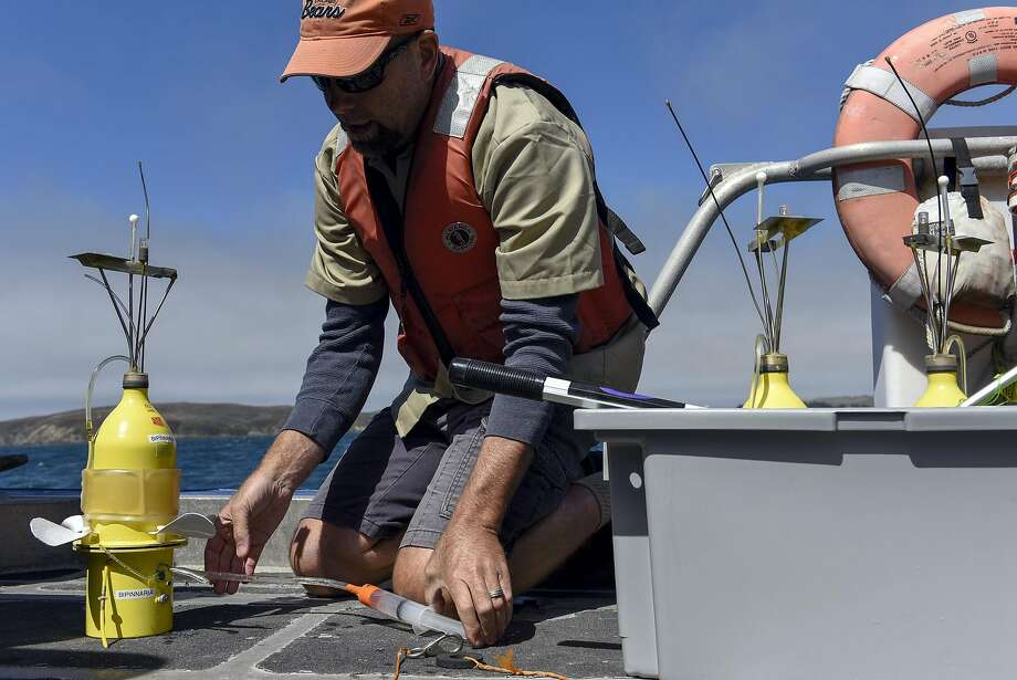 "Grant Sussner, principal marine technician at the UC Davis Bodega Marine Laboratory, prepares to launch ""Larvae Robots"" into the water of Bodega Bay during a demonstration of their new technology that is designed to simulate the movements of marine larvae, in Bodega Bay, CA Wednesday, August 31, 2016. Photo: Michael Short, Special To The Chronicle"