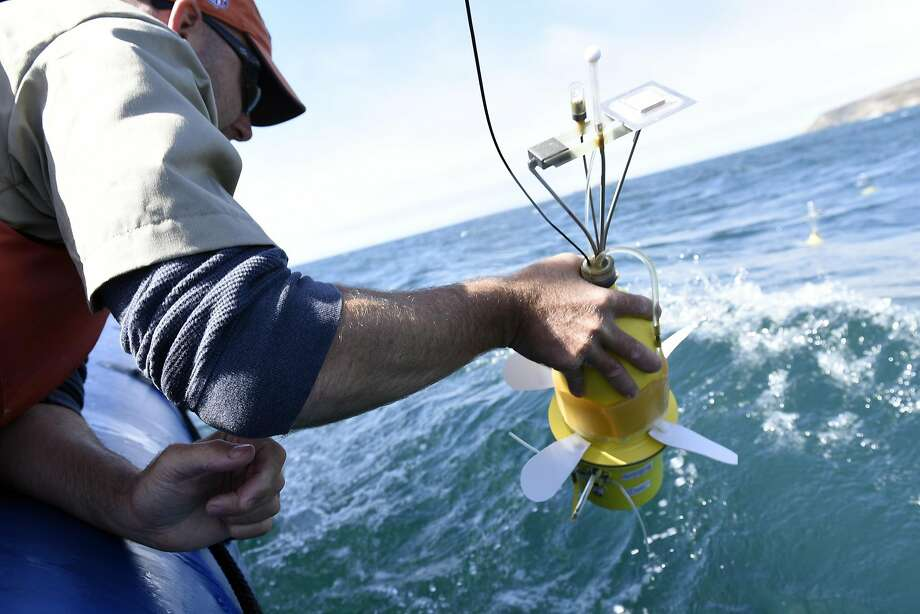 """Grant Sussner, principal marine technician at the UC Davis Bodega Marine Laboratory, drops """"Larvae Robots"""" into the water of Bodega Bay during a demonstration of their new technology that is designed to simulate the movements of marine larvae, in Bodega Bay, CA Wednesday, August 31, 2016. Photo: Michael Short, Special To The Chronicle"""