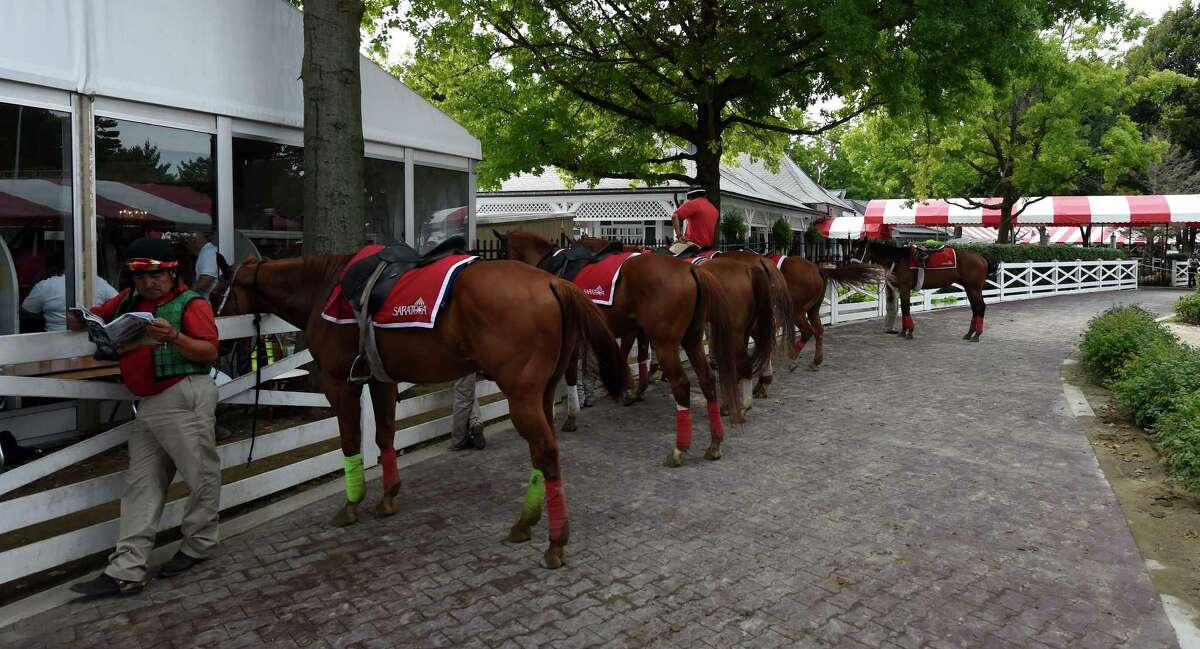 Lead ponies wait for the next race, the ninth on the walkway to the track at the Saratoga Race Course Wednesday August 31, 2016 at in Saratoga Springs, N.Y. (Skip Dickstein/Times Union)