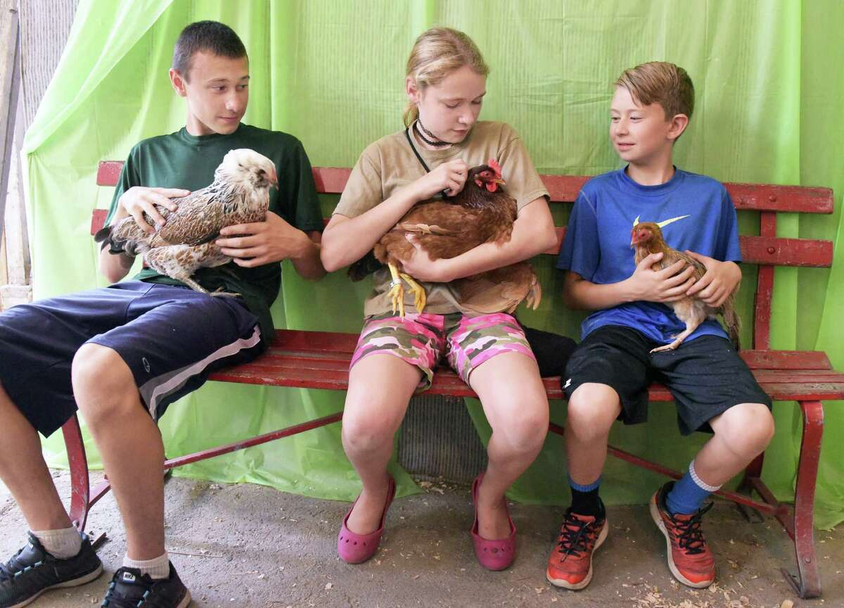 Brothers Seth Smith, 14, left, and Luke Smith, 10, of Averill Park and Maddie Hurd, 13, center, with their chickens at the Schaghticoke Fair on Wednesday, Aug. 31, 2016, in Schaghticoke, N.Y. (John Carl D'Annibale / Times Union)