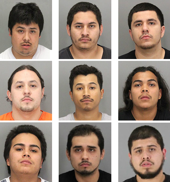 Sf Chronicle Classifieds: Year-long Probe Leads To Massive East Palo Alto Gang Bust