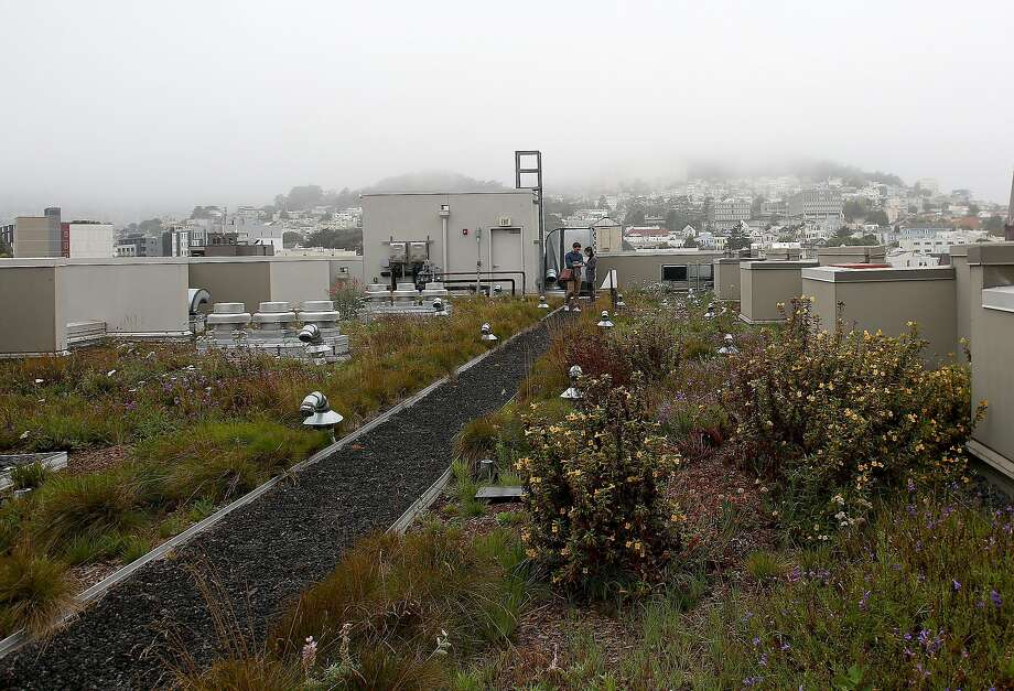 Bill would encourage rooftop gardens on new SF buildings ...