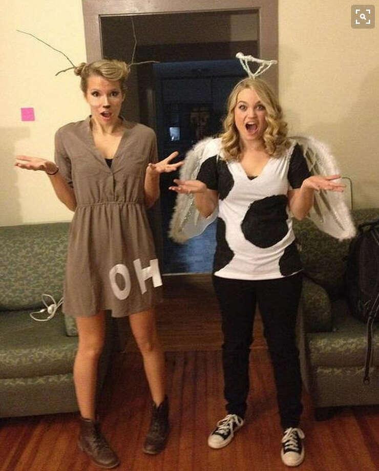 """Oh deer"" & ""Holy cow""Photo: Pinterest Photo: Pinterest"