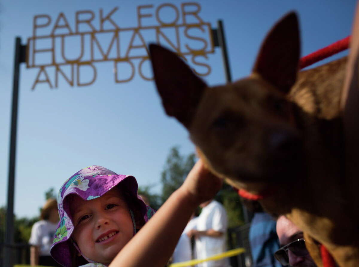 Vivian West, 4, pets a dog during the ribbon cutting celebration of the Park for Human and Dogs at the Sixth Ward in Houston, Saturday, Sept. 3, 2016, in Houston.