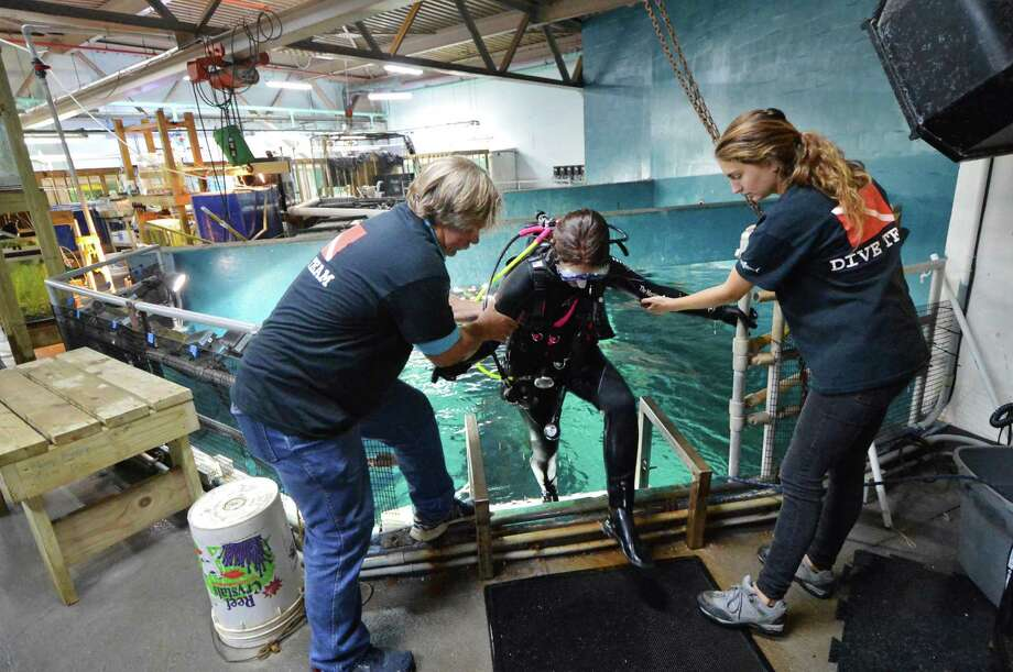 """During Shark Dive Thursday, the Maritime Aquarium at Norwalk's dive team helps diver Devan Shulby from the tank after swimming among the sand tiger sharks and lemon sharks in the 110,000-gallon """"Ocean Beyond the Sound"""" exhibit. Monitoring has been done on fish to establish a baseline behavior to monitor their wellness during construction of the Walk Bridge which runs between the aquarium and the IMAX Theater. Photo: Alex Von Kleydorff / Hearst Connecticut Media / Connecticut Post"""