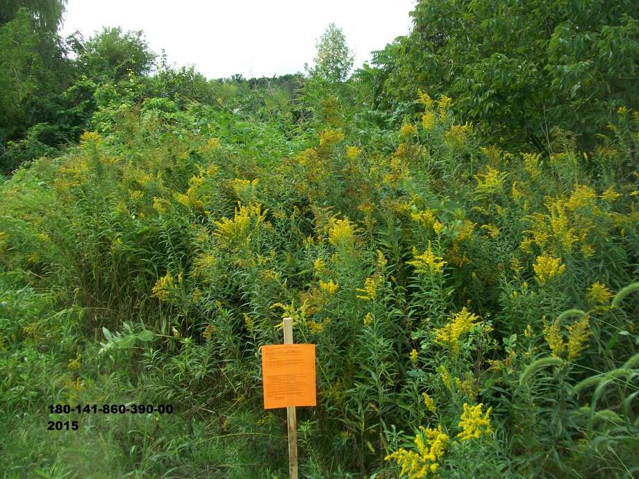 Conservation easement, 2.45 acres, at 2801 Pomranky RoadMinimum bid: $300Previous minimum bid: $3,1002015 taxes: $177.222015 SEV: $3,100 Photo: Midland County Treasurer