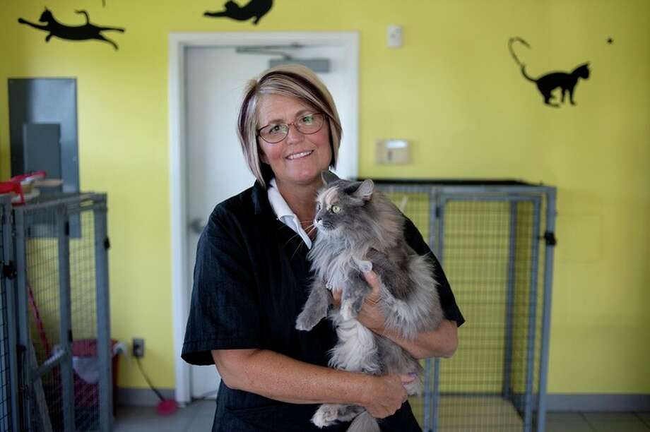Foxbrook Kennel owner Guyan Lange holds Jimmy inside the room where cats are kept when their owners board them at Foxbrook. Foxbrook is Daily News 2016 Readers' Choice winner for best pet boarding, grooming and doggie daycare.