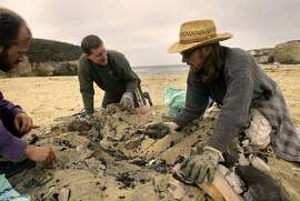 COASTAL_021_LH.JPG  clockwise--Crouton Jones, from Boulder Creek, Tymn Urban (cq) from Santa Cruz, and Bill Haskell from Berkeley picking up mostly glass and nails at the 20th annual California coastal cleanup day at Boony Doon beach.    Shot on 9/18/04 in Davenport.  LIZ HAFALIA / The Chronicle  Ran on: 09-19-2004 Crouton Jones (left) of Boulder Creek (Santa Cruz County), Tymn Urban of Santa Cruz and Bill Haskell of Berkeley pick up trash.  Ran on: 09-19-2004 Crouton Jones (left) of Boulder Creek (Santa Cruz County), Tymn Urban of Santa Cruz and Bill Haskell of Berkeley pick up trash.