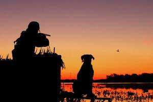 An early push of blue-winged teal and welcoming wetland habitat conditions on coastal prairies and marshes thanks to the wettest August in a century have set the stage for a great opening of Texas' 16-day teal-only hunting season Saturday.