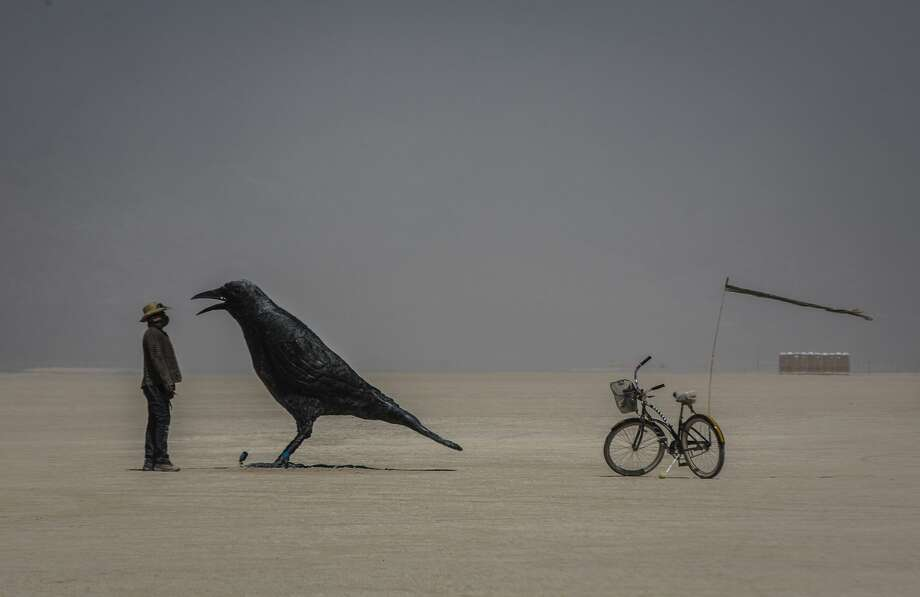 """Pictured above are one of the crows featured in """"Murder,""""Champion's Burning Man 2016 installation that consists of five massive bronze crows. Champion's 2019 installation similarly features large animals – the two 6-foot-tall elephants were stolen on Sunday. Photo: Sidney Erthal"""