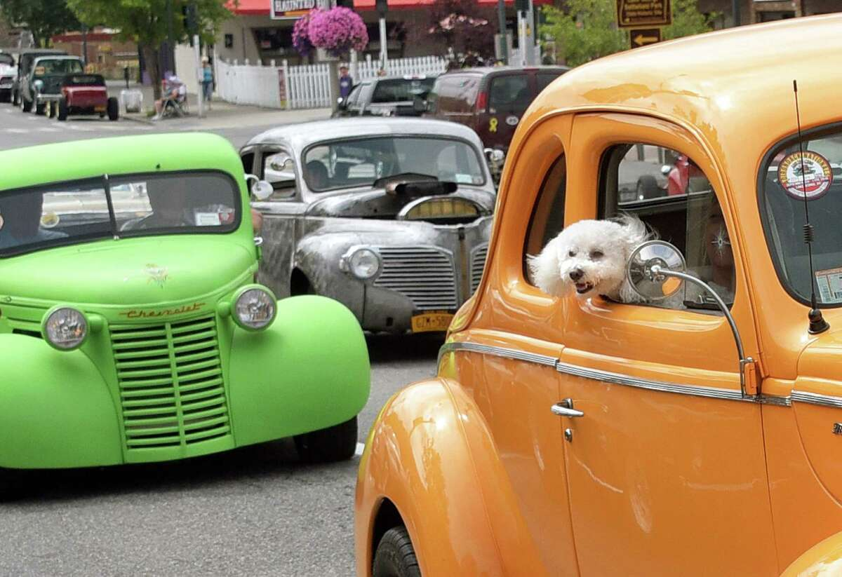 Although it's not illegal, driving with your dog loose in the car is dangerous to both driver and dog. (John Carl D'Annibale / Times Union)