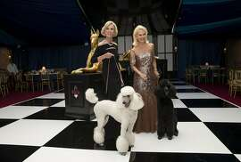 Patricia Sprincin (left) and Sandra Farris, co-chairs of the San Francisco Opera Guild's Opera Ball 2016, pose for photos with French poodles in the patron's dinner tent outside War Memorial Opera House in San Francisco, Calif., on Friday, September 9, 2016. The gala event inaugurated the opera's 94th season.