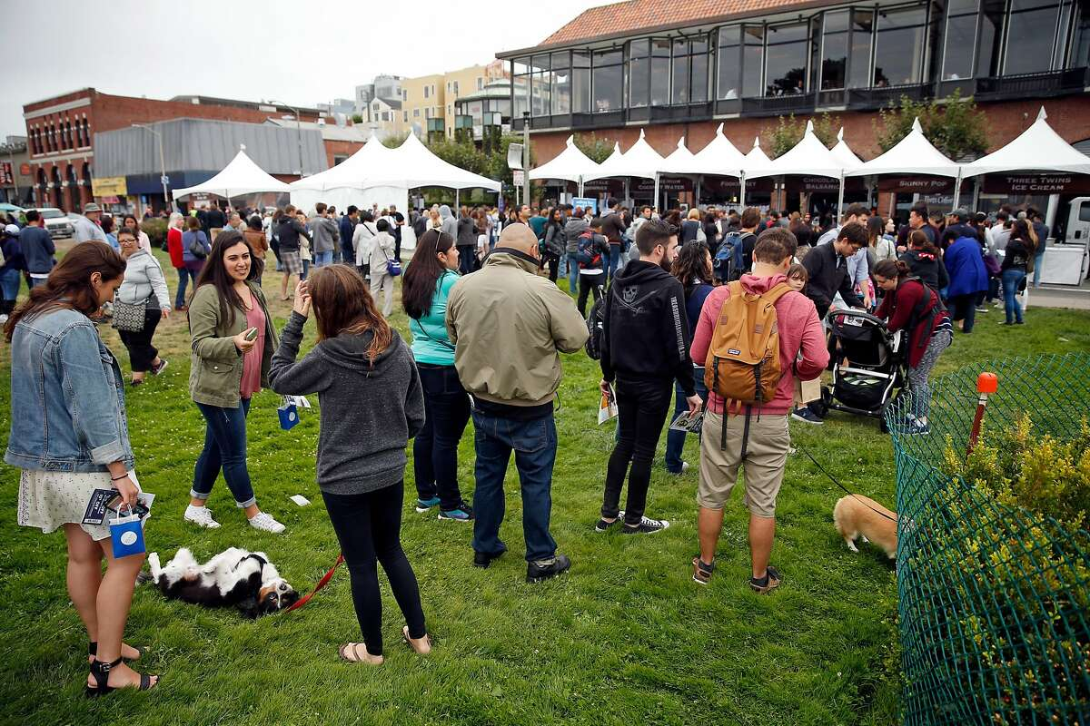 Jessie Kinert's dog, Brewster, rolls around on the grass as her owner waits for a sample from the Three Twins Ice Cream booth during Ghirardelli Chocolate Festival in San Francisco, Calif., on Sunday, September 11, 2016.