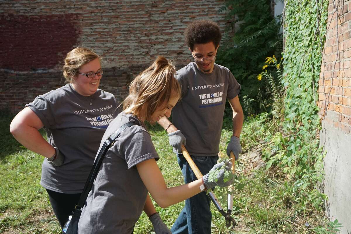 Were you Seen with students in UAlbany's Living Learning Communities program volunteering throughout Albany's South End and business district on Sunday, Sept. 11, 2016?