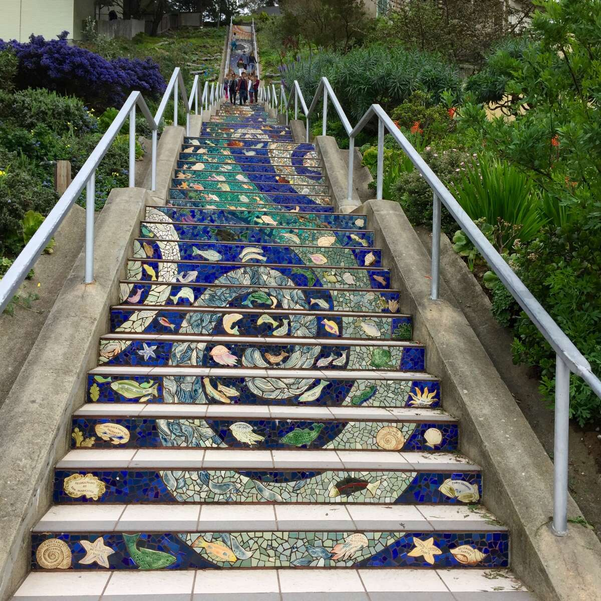 Click through this slideshow to see some of our favorite things to do for fun that are off the beaten path in the Bay Area, including this special mosaic staircase in San Francisco, created by artists Aileen Barr and Colette Crutcher. (And this may actually be one of the more well-known things to do in this compilation.)