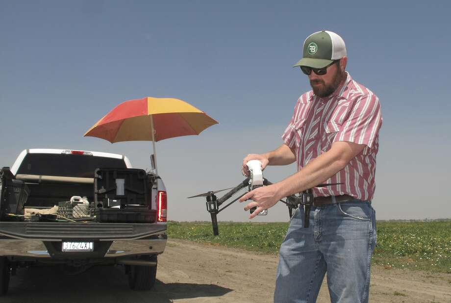 Danny Royer, vice president of technology at Bowles Farming Co., prepares to pilot a drone over a tomato field near Los Banos (Merced County) in July. Photo: Scott Smith, Associated Press