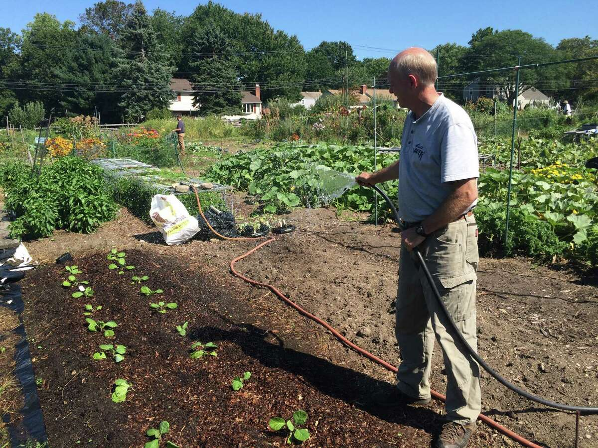 The Stratford Community Garden was re-named Wednesday in honor of former state Rep. Terry Backer, who died in office in December 2015. Gardener Jon Sedgwick said that the garden has brought people together and has built bridges between the generations.