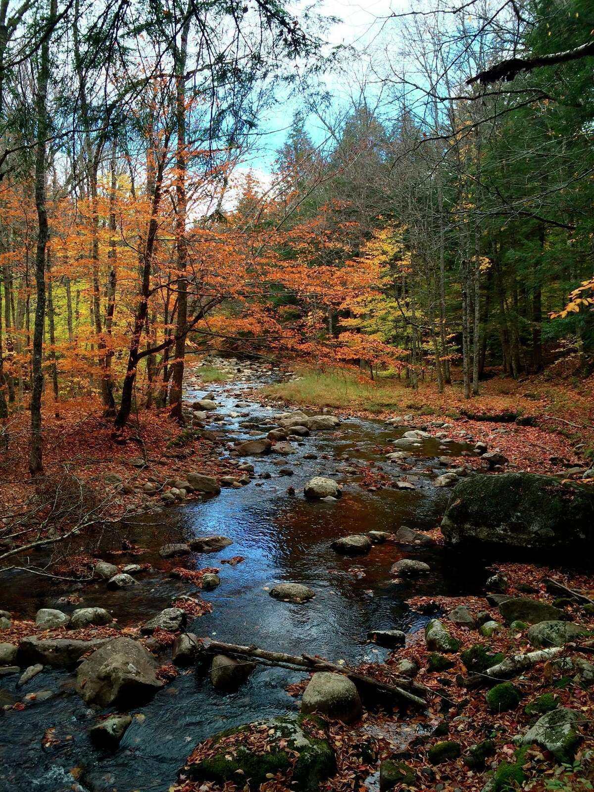 This Oct. 18, 2015, photo shows fall colors along East Stony Creek in the town of Hope, N.Y., along a road off Route 30 in the southern Adirondacks.