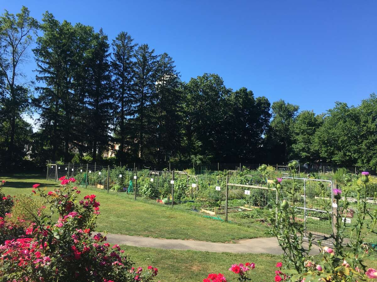 The first annual Ninety 9 Bottle Wine Festival, on Saturday, Sept. 24, at Fodor Farm Community Garden and Barn in Norwalk, will bring wine connoisseurs together for food and fun.