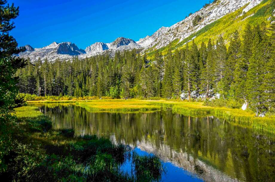 At Weir Pond in Bishop Creek Canyon many trees are turning yellow, but foliage around the pond is still a week away from peek conditions. Photo: Jared Smith / CaliforniaFallColor.com